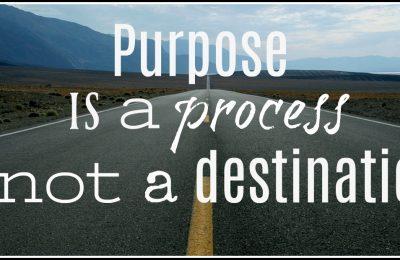 purposeblog3